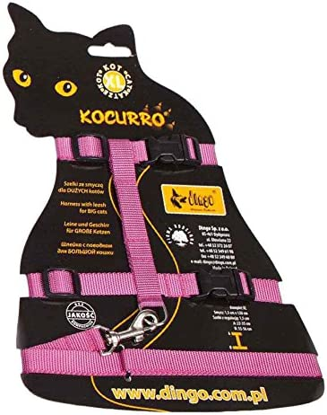 Set for Big Cat Pink 21023 Dingo Tomcat Harness with Leash