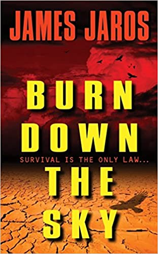 Book Burn Down the Sky
