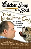 chicken soup for the soul dog - Chicken Soup for the Soul: What I Learned from the Dog: 101 Stories about Life, Love, and Lessons
