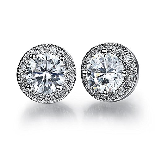 Dog Brother 18k Silver Plated Cubic Zirconia Halo White Round Diamond Stud Earrings 8mm (Brothers Property Where)