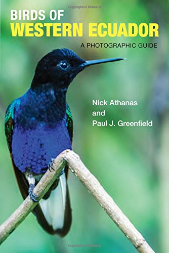 Birds of Western Ecuador: A Photographic Guide (Number Of Bird Species In Costa Rica)