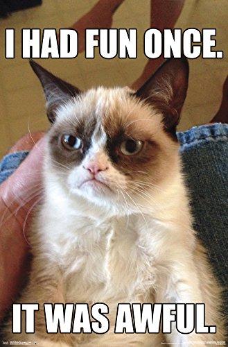 Trends International Grumpy Cat Fun Wall Poster