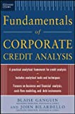 img - for Standard & Poor's Fundamentals of Corporate Credit Analysis book / textbook / text book