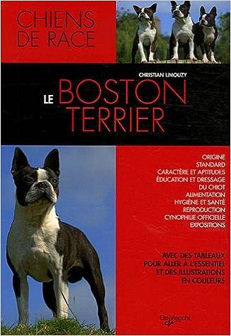 Le Boston terrier