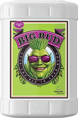 Advanced Nutrients Big Bud Liquid Fertilizer, 23-Liter