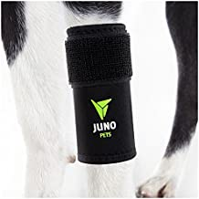 JunoPets Dog Canine Leg Knee Brace, Hock Joint Wrap for Heals and Prevents Injuries and Sprains Helps with Loss of Stability (Front Leg, Small/Med)
