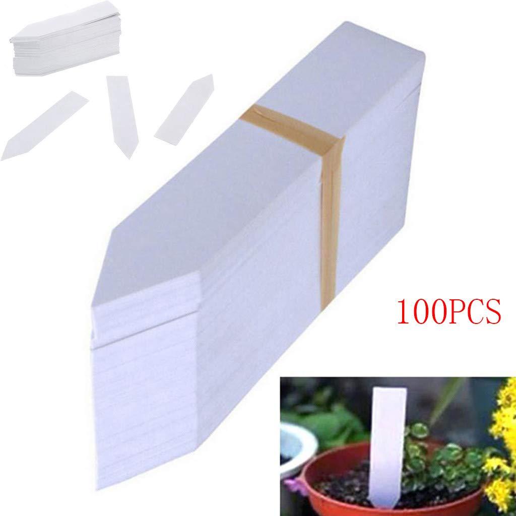 Finedayqi - Etiquetas de plástico para Plantas, Plantas, Plantas ...