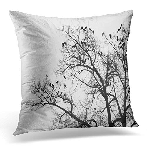 Emvency Throw Pillow Cover Black Animal Crows in Trees Darkness Halloween Birds Nest Decorative Pillow Case Home Decor Square 18