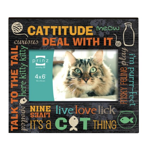 prinz typography cat wood frame 6 by 4 inch