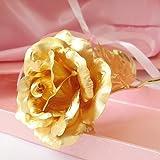 KDLINKS 24K 10-Inch Gold Foil Rose - Best Valentine's Day Gifts - Handcrafted & Last Forever! by KDLINKS