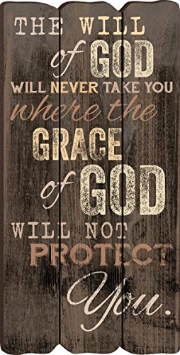 The Will of God Grace of God Small Fence Post Wood Look Wall Art Plaque by P Graham Dunn