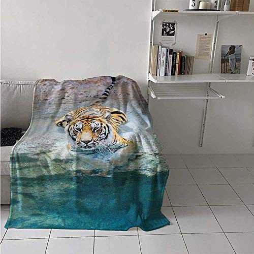 - maisi Safari Custom Design Cozy Flannel Blanket Picture of a Bengal Tiger Lying Near Water Wild Life Cave Stone Clear Water Lightweight Blanket Extra Big 70x60 Inch Teal Cream Mustard