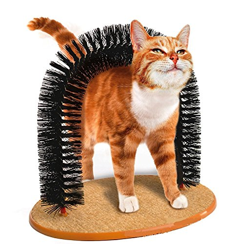 Stock Show 1Pc Durable Plastic Fur Brush Scratching Base Pet Kitty/Cat/Kitten Arch Self-Groomer Massager Catnip Toy Cleaning Tool
