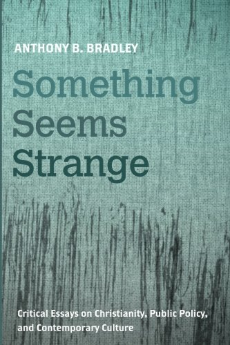 Something Seems Strange: Critical Essays on Christianity, Public Policy, and Contemporary Culture