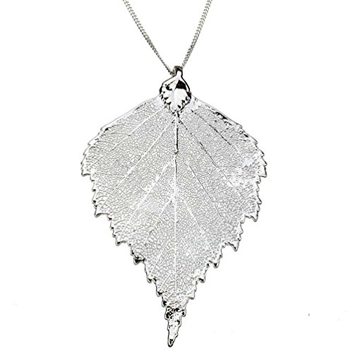 (Silver-Plated Birch Leaf Pendant Sterling Silver Curb Chain Necklace, 16