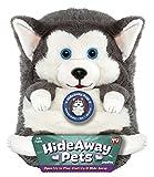 Jay At Play 15″ Hideaway Pets (Siberian Husky) thumbnail