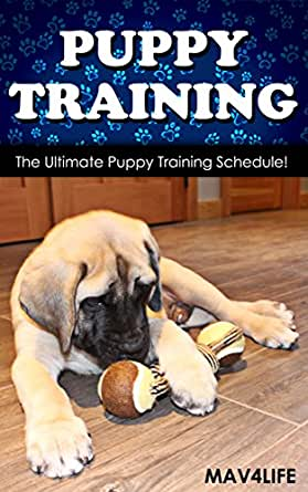 Puppy Training: The Ultimate Puppy Training Schedule!