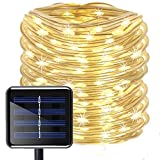 Aluvee Solar String Light,Garden Decoration Outdoor Waterproof Copper Wire String Christmas Lamp for Wedding Party Tree Xmas Decoration Tree Xmas (33ft/100LED,Warm White + PVC tube)