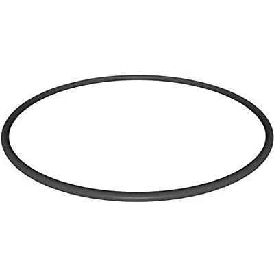 Hayward CX900F Filter Head O-Ring Replacement for Hayward Star-Clear Plus Cartridge Filter Series and Separation Tank : Swimming Pool Filters : Garden & Outdoor