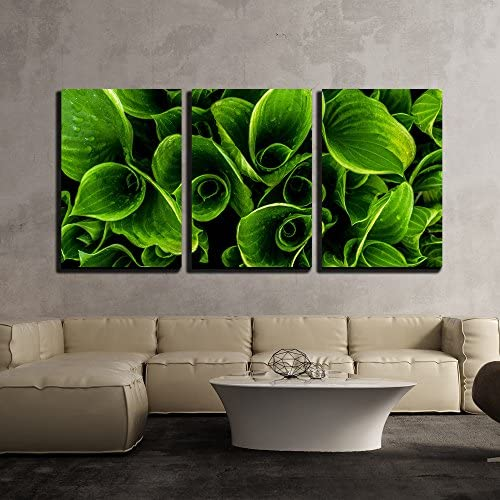 wall26 – 3 Piece Canvas Wall Art – Green Leaves with Waterdrops – Modern Home Decor Stretched and Framed Ready to Hang – 24 x36 x3 Panels