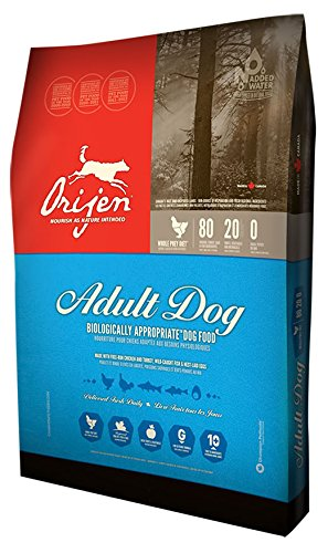 Orijen Adult Dry Dog Food 12oz