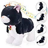 Black Plush Cat Stuffed Animal Interactive Cat Robot Toy, Baby Friends Kitty Cat Pets, Barking Kitten Sound Control, Electronic Cat Pet, Walking Cat Kitty Toy, Animated Toy Cats for Girls Baby Kids