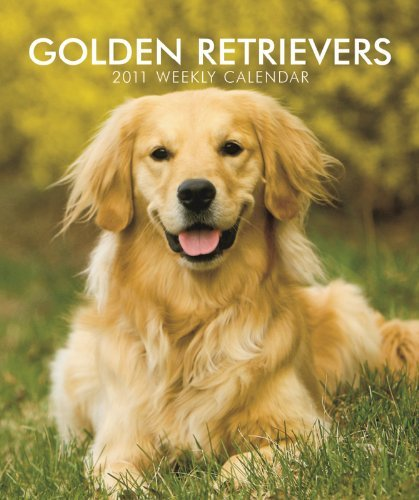 Golden Retrievers 2011 Hardcover Weekly Eng (Multilingual Edition) by BrownTrout Publishers Inc (2010-06-28)