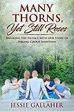 Many Thorns, Yet Still Roses