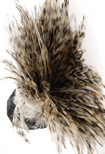 Wayfair Feather Trim Chinchilla 36in