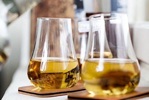 Sagaform 5017622 Whiskey Tasting, Set of 2 Glasses with Coasters, 5 oz, Clear by Sagaform (Image #1)