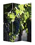 Screen Gems Wine Country Room Divider