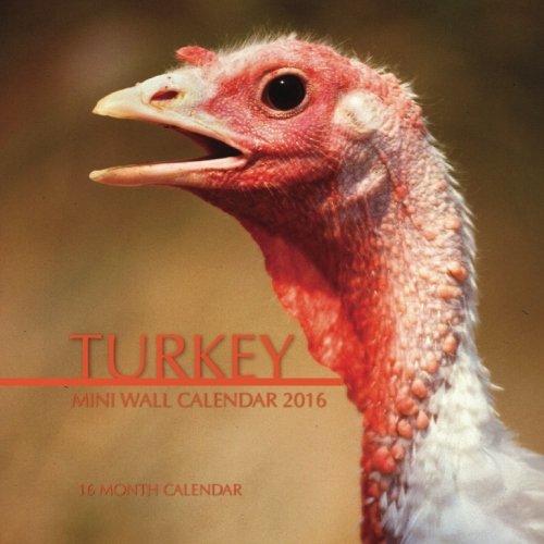 Turkey Mini Wall Calendar 2016: 16 Month Calendar PDF