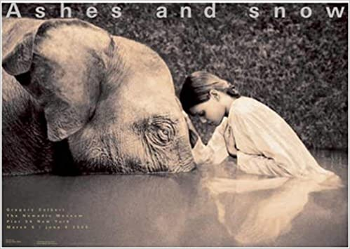 boy reading to elephant ny exhibition giant poster new york exhibition giant poster ashes and snow posters
