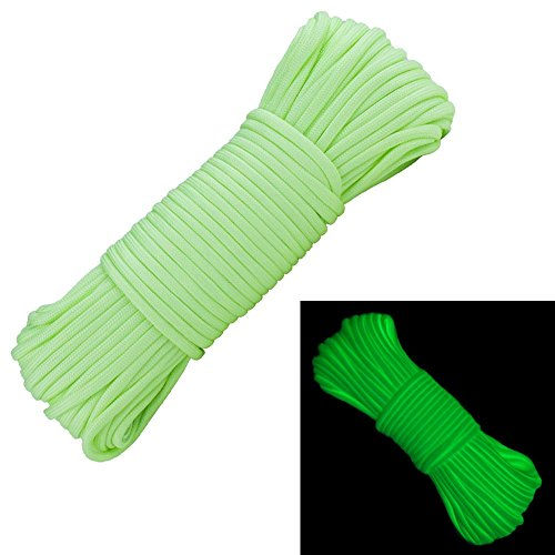 Glow in The Dark Zesty 21 Strand 550 Luminous Paracord Parachute Rope Cord (Green Goblin, 25 Feet)