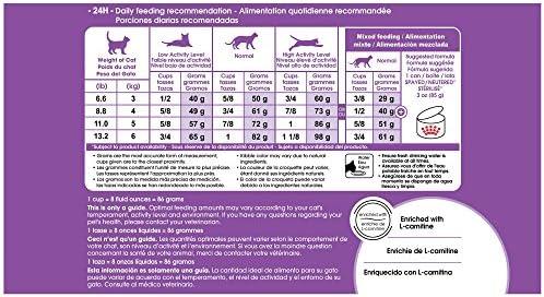 Royal Canin Spayed Neutered Appetite Control +7 Comida para Gatos, Sabor a Pollo, Tamaño Pequeño 2.7 kg 6