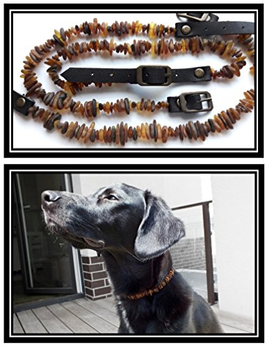 Lot wholesale 3 amber collars for dogs and cats-100% natural Baltic amber | Adjustable leather strap-sizes(6''-18'') | Natural Tick and Flea Control (8''-10'')
