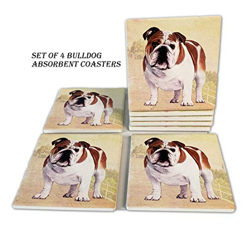 Bulldogs Furniture - Bulldog Coasters - Moisture Absorbing Stone Coasters with Cork Base, Prevent Furniture from Dirty and Scratched, Stone Coasters set Suitable for Kinds of Mugs and Cups, Set of 4
