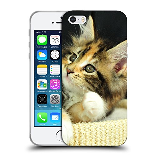 Just Phone Cases Coque de Protection TPU Silicone Case pour // V00004292 Adorable chaton couché sur le dos // Apple iPhone 5 5S 5G SE