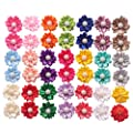 Yaka 40pcs 20paris Cute Dog Hair Bows With Rubber Bands Pearls Flowers Topknot Dog Bows Pet Grooming Products 20 Colors