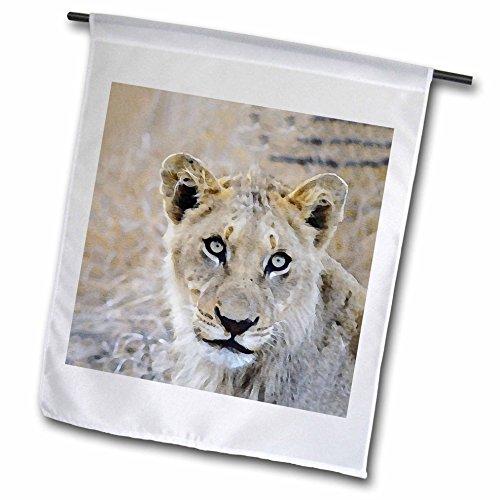 3dRose Andrea Haase Animals Illustration - Lioness Head Watercolor Illustration - 12 x 18 inch Garden Flag (Lioness Head)