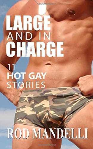 Large And In Charge  11 Hot Gay Stories PDF
