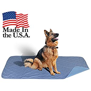 Careoutfit 36 x 72 – XXL Big Size Premium Stain Resistant Quick Absorbent Waterproof Reusable/Quilted Washable Large Dog… Click on image for further info.