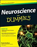 Neuroscience For Dummies