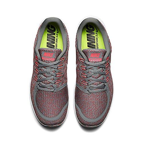 buy cheap original Nike Men's Free 5.0 Running Shoe Tmbld Gry/Rflct Slvr- Brght Crm clearance online amazon Owo9lQ