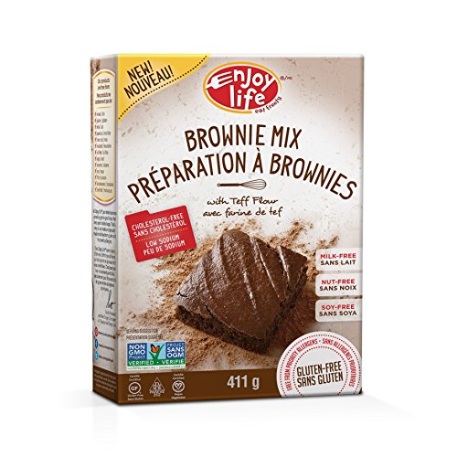 Enjoy Life Baking Mixes, Soy-free, Nut-free, Gluten-free, Dairy-free, Non-GMO, Vegan, Brownie Mix, 14.5 Ounce - Dairy Nuts Non