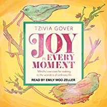 JOY IN EVERY MOMENT: MINDFUL EXERCISES FOR WAKING UP TO THE WONDERS OF ORDINARY LIFE