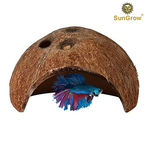 SunGrow Betta cave: Natural habitat made from coconut shells: Soft-textured smooth edges  spacious hideout for Betta fish to rest and breed: Maintain…