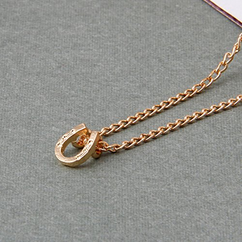 Delight eShop New Lucky Horseshoe Pendant Alloy Clavicle Necklace With Card Women (Diamond Lucky Horseshoe Pendant)