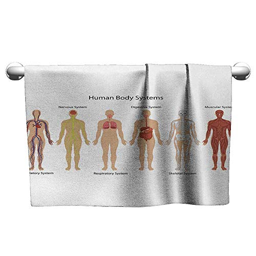 Multi Hooded Towel - clayee Premium Human Anatomy,Human Body with Central Nervous Network Skeleton and Neurons Image Muscle System,Multi,Hooded Towel for Baby boy