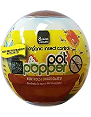 Nema Globe Pot Popper Organic Indoor Fungus Gnat & Insect Control 8x1 Million Beneficial Nematodes (S.Feltiae)